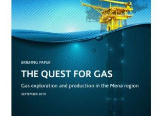 BRIEFING PAPER: The Quest for Gas