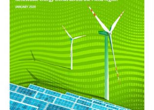 BRIEFING PAPER: Sustainable Vision